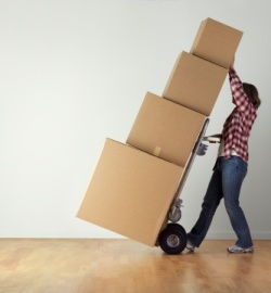 Movers in Reading, PA